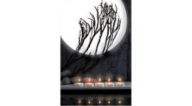 Pleine lune LUMINEUSE Blanche ampoules fluo compacte