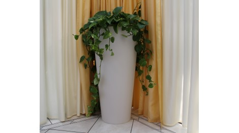 http://so-luz.com/159-thickbox_default/pot-de-fleurs-design-d-exterieur-elance-rond.jpg